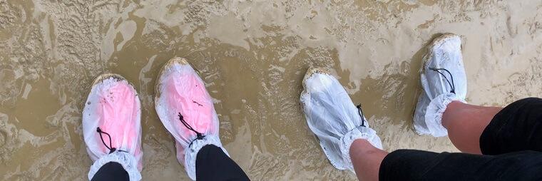 京都大作戦で使用したダイソーの靴カバー